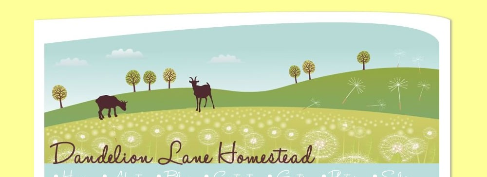 dandelion-lane-homestead-home