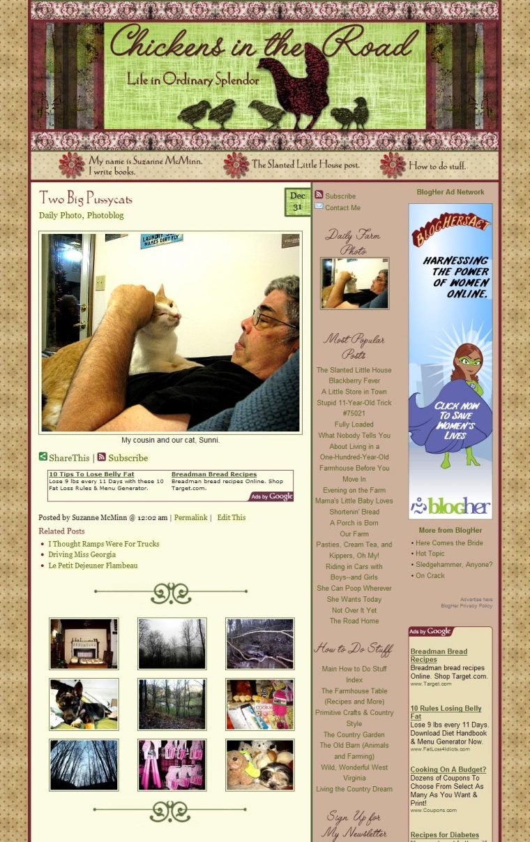 Blog Design for Chickens in the Road by Swank Web Design